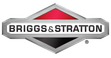 Briggs & Stratton Engines and Motors